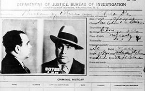 Criminal Convictions, Background Investigations, Criminal Court Records, Background Checks